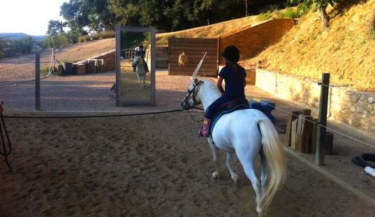 canpuigmquel, caballos